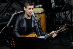 8 giugno 2013, apertura live di Edoardo Bennato (VI) (4)